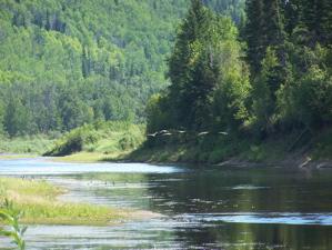 Wabasca River